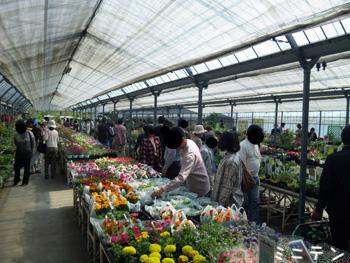 2011_05_21_6